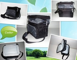 6+3 can Expansion cooler bag with EVA bottom
