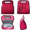 2011 high quality cute lunch cooler bag