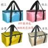 2012 newest design cooler bag