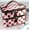 HLXB-009 2011new style cosmetic bag,fashion bag,popular bag