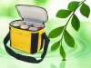 Mini insulated cooler picnic bage for export