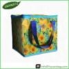 Outdoor PP Non-woven Cooler Bag
