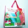 PP matt lamination woven shopper bag