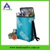 Picnic bag & lunch cooler bag & cute lunch cooler bag