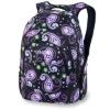 laptop bags/backpack
